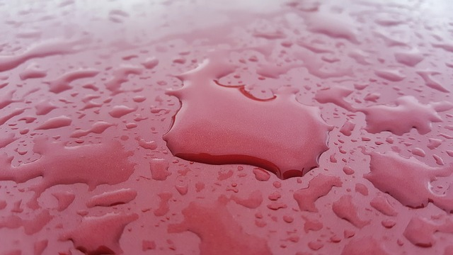 Water on red car hood demonstrating hydrophobic qualities of F11 Car Wax Reviews